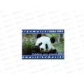 Альбом для рисования  8 листов ТПМ Animal World, АР08М025/O/1 *70