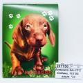 Блокнот 24листа ПГС Собаки, 110*80, глиттер. *24