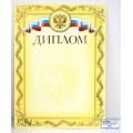 Диплом А4 ХАТ тисн зол.фол.симв,14038, 038818 *10/200