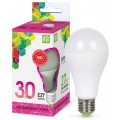 Лампа светодиодная ASD LED-A70-standard 30Вт E27 6500К 2700Лм *50