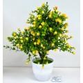 Бонсай в горшке &quotМелкие цветочки 9*25см микс 4457651