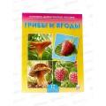 Дидактическое Пособие. Грибы и ягоды, ПД-7215 *30