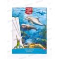 Картон Белый А4  EK 8л,  Дельфин игрушка-набор д/творчества 47367